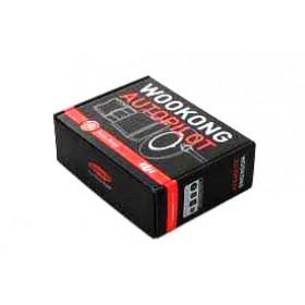 DJI S800 EVO + Wookong M
