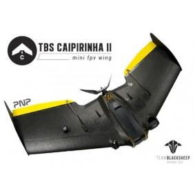 TBS Caipirinha 2 Flying Wing